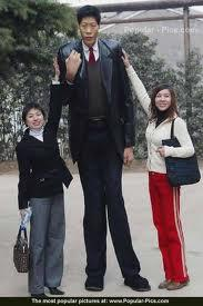 Walking Tall: How to Grow Taller